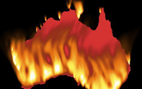 Australian Bushfires Affect Local Community