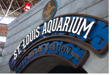 The St. Louis Aquarium is located at Union Station along with the Mirror Maze, Ropes Course, Mini Golf, and Ferris Wheel. It was developed as part of the city
