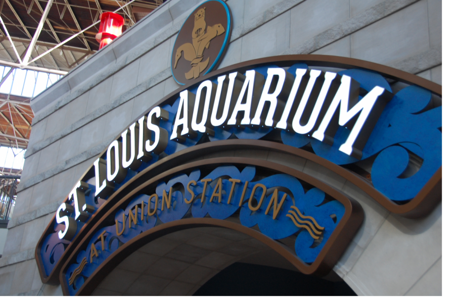The+St.+Louis+Aquarium+is+located+at+Union+Station+along+with+the+Mirror+Maze%2C+Ropes+Course%2C+Mini+Golf%2C+and+Ferris+Wheel.+It+was+developed+as+part+of+the+city%27s+effort+to+breathe+life+back+into+the+old+train+station.+%0A
